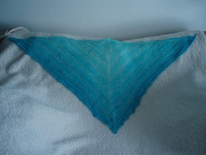 Mother of All Shawl a