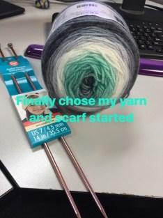 yarn for diagonal scarf - Keri