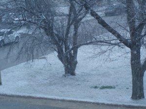 More Snow 4-8-18